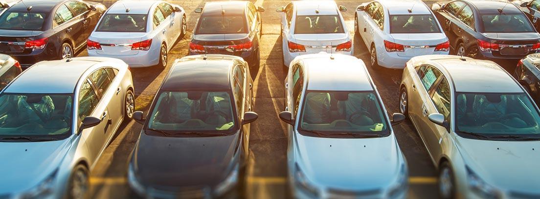 Coches fabricados en España aparcados en filas