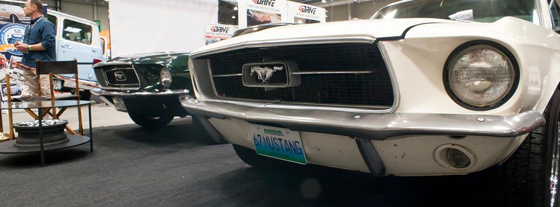 Mustang blanco en una subasta de coches