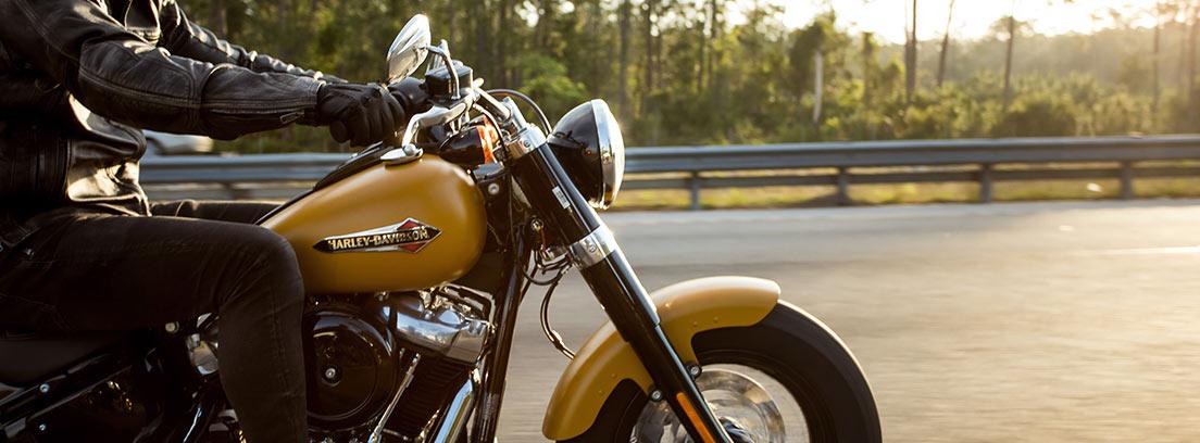 Motorista de negro sobre Harley Davidson mostaza y negra circulando por carretera