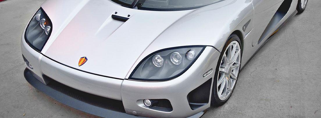Koenigsegg CCXR Trevita en gris