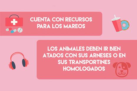 infografía con recursos para niños, mayores y animales