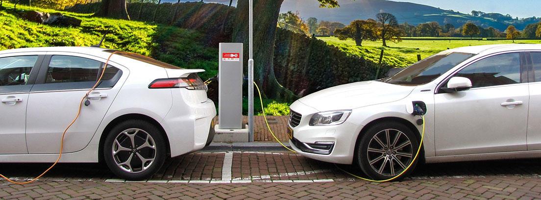 coches cargándose en punto de carga eléctrico
