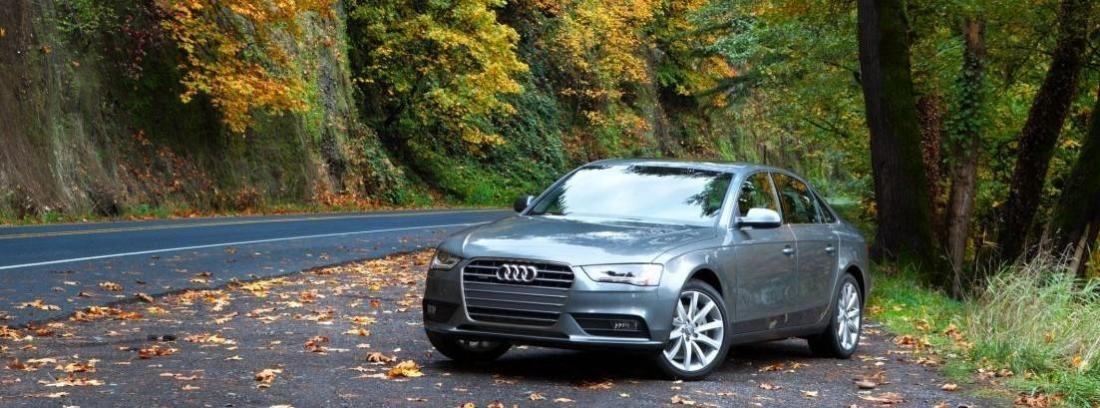 Audi A4 advanced edition gris en una carretera