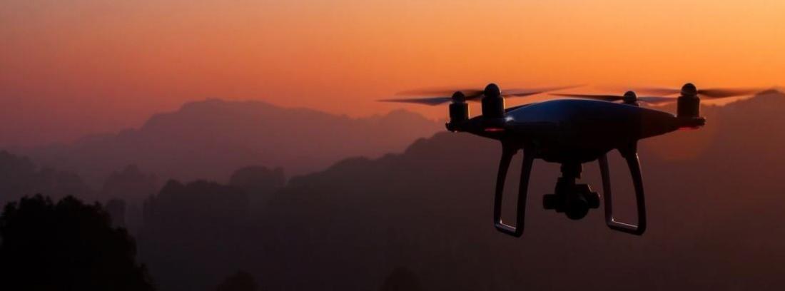 Drone vuela por un campo