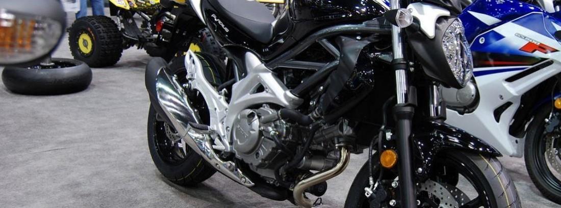 Suzuki Gladius 650 - Sacar el carnet de moto A2 por libre