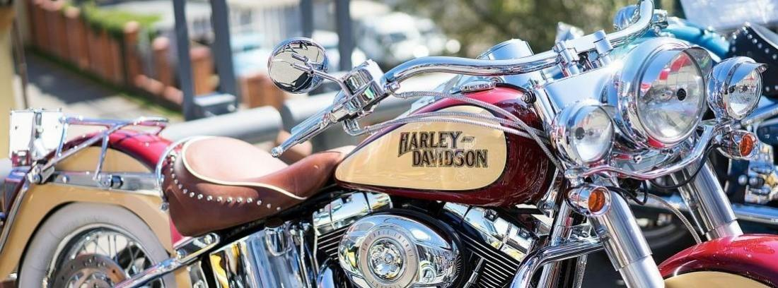 motos Harley-Davidson negras expuestas en fila