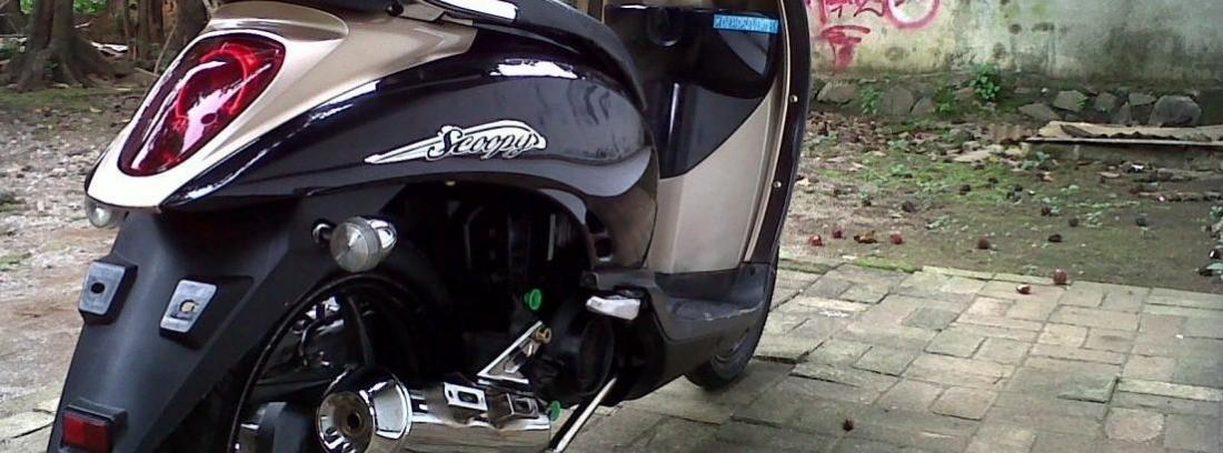 Honda SH 300i Scoopy