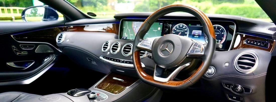 Mercedes Madera