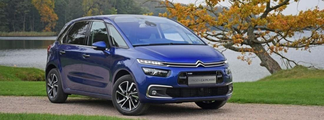 C4 Picasso Seduction