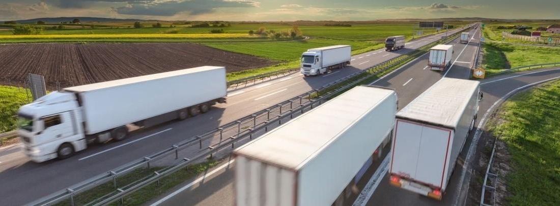 Camiones circulando por una carretera rodeada de vegetación