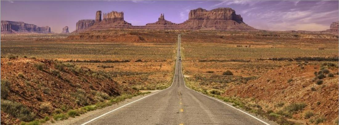 ¿Qué carnet necesito para conducir por Estados Unidos?