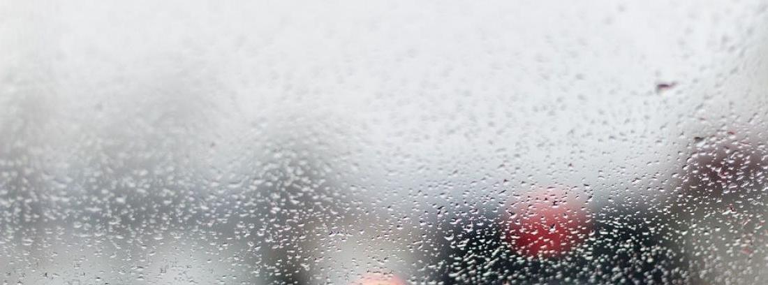 Quitar el olor a humedad del interior de tu coche