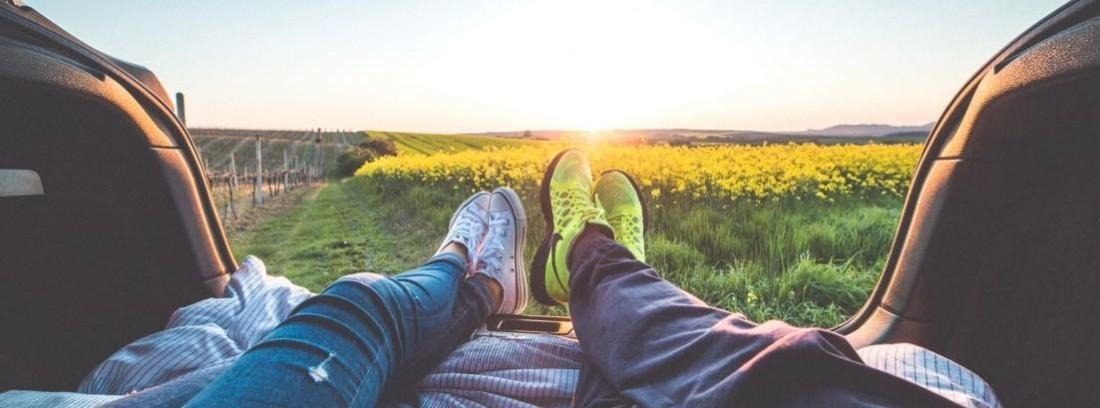 las piernas de una pareja tumbada en un prado