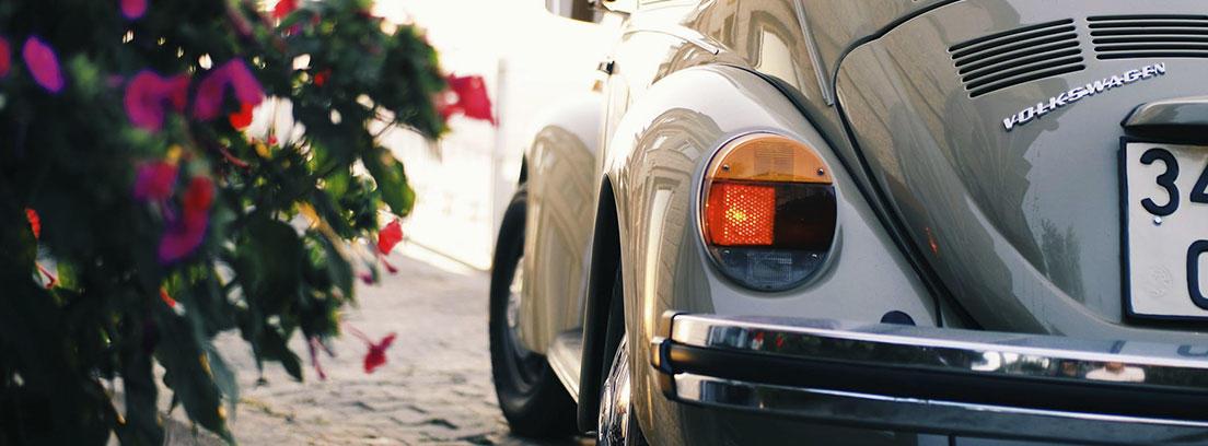 Vista lateral trasera de coche gris Volkswagen escarabajo junto a plantas de flores rosas.