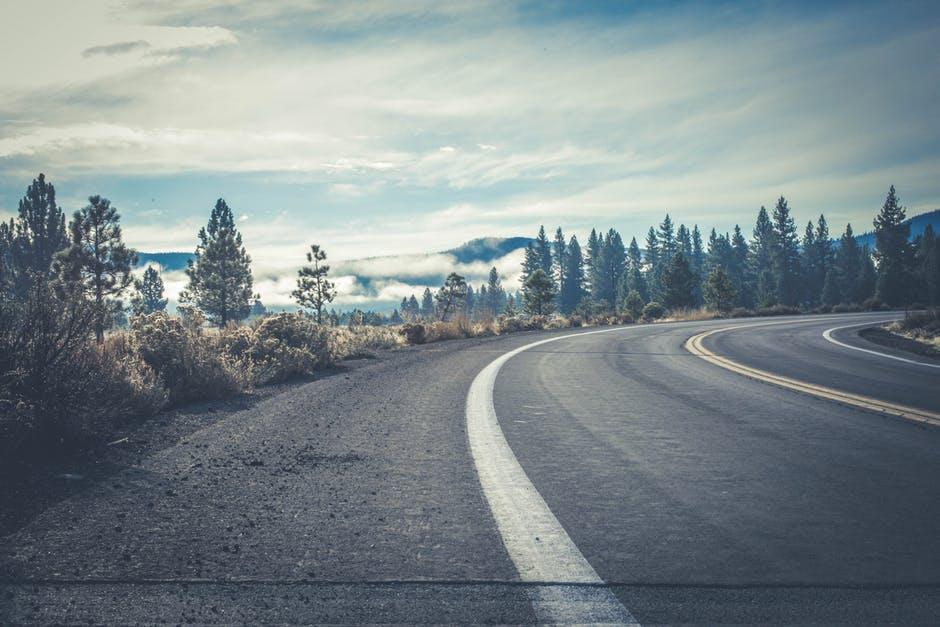 Carretera en curva con línea central doble y arcén con línea blanca bordeada de árboles.