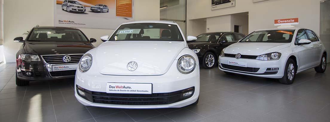 Varios coches blancos y negros dentro de concesionario para venta.