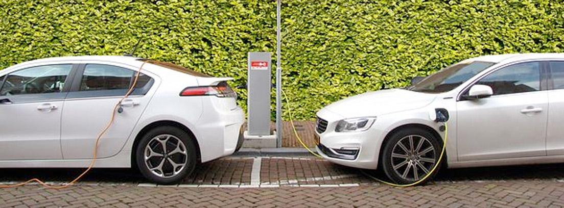 Dos coches eléctricos enchufados a un punto de carga