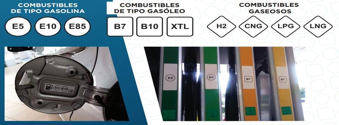 Gráfica etiquetas combustible