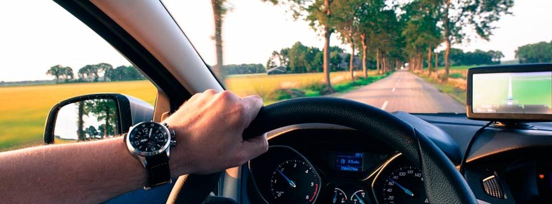 Interior de coche con mano sobre volante y fuera carretera con árboles