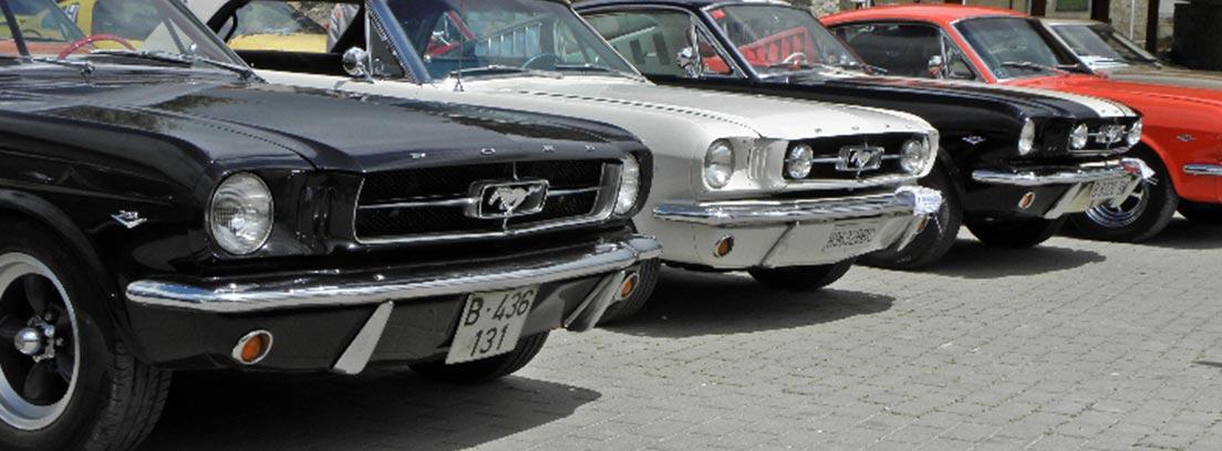 Fila de Mustang clásicos aparcados en la calle