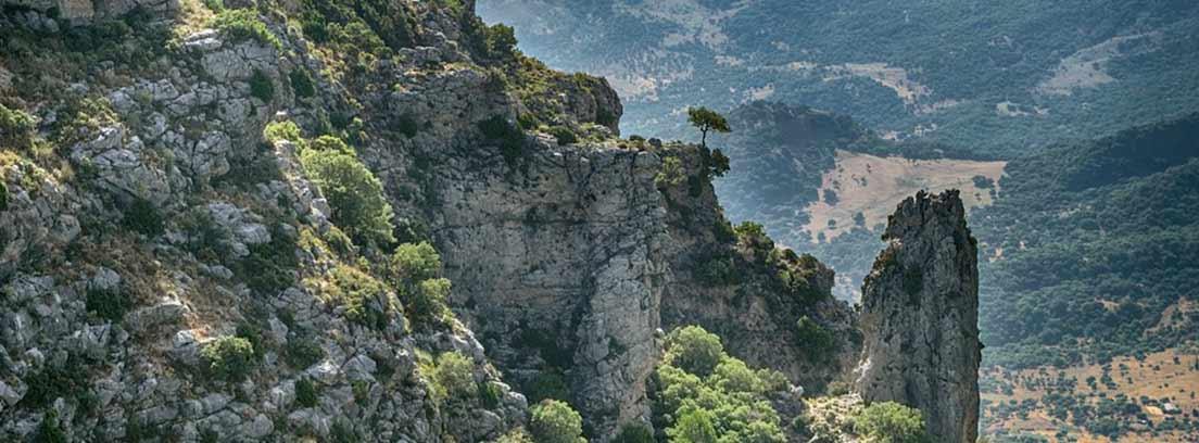 Paisaje de montaña escarpada con vegetación