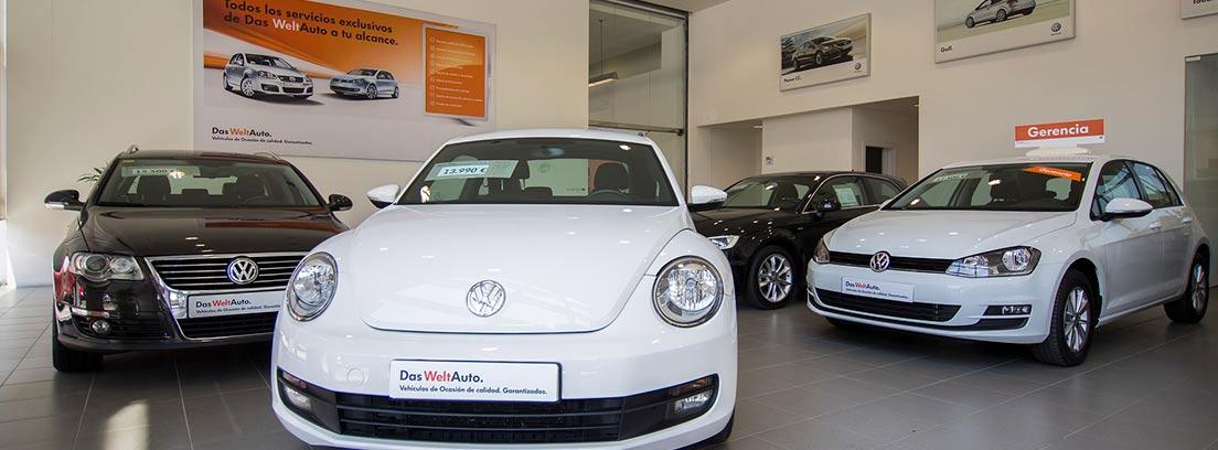 Varios coches Volkswagen en un concesionario