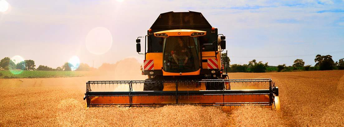 Máquina segadora en un campo de trigo