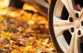Rueda de coche sobre hojas amarillas de árbol caídas en la carretera.