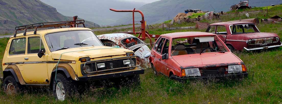 Varios vehículos abandonados en el campo