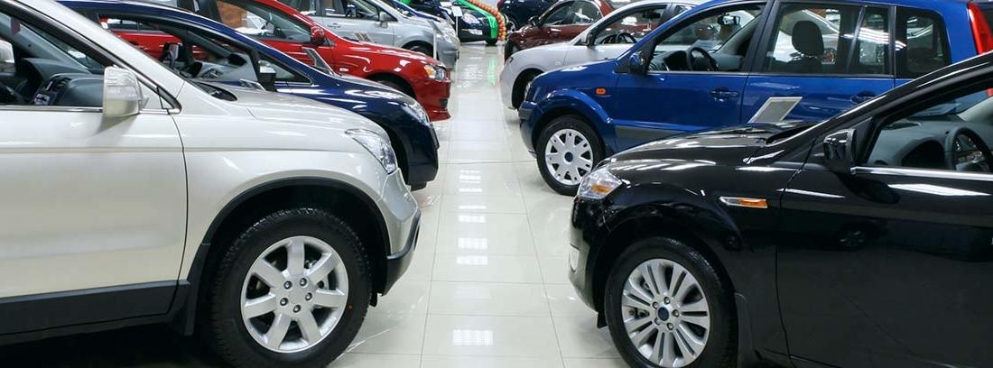 Distintos coches en un concesionario