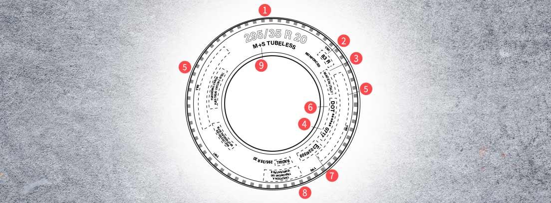 neumatico con la simbologia y significado