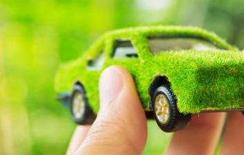 Mano sujetando un coche de juguete cubierto de musgo