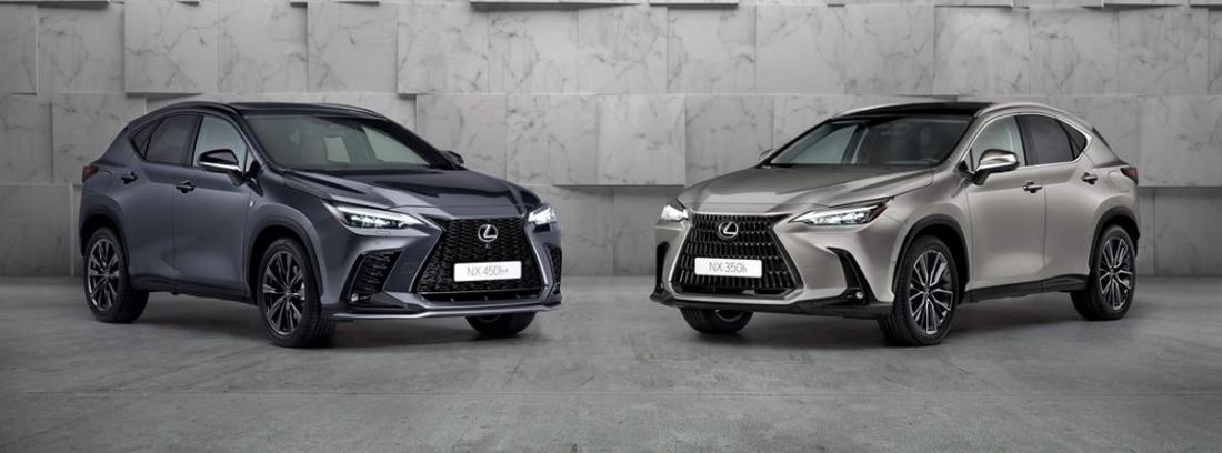 Dos coches del nuevo modelo de Lexus NX 2022 en gris oscuro y gris perla